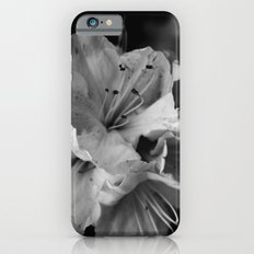 Timeless Black & White  iPhone 6s Slim Case