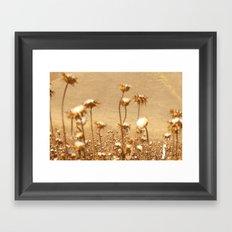 cotton Framed Art Print