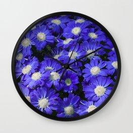 Cineraria Blue Wall Clock