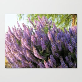 """City Blooms Summer of Seventeen"" Canvas Print"