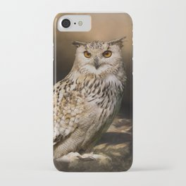 Two Owls iPhone Case