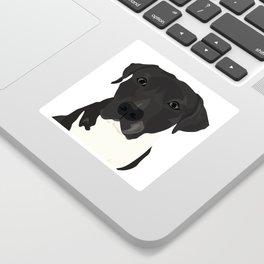Atticus the Pit Bull Sticker