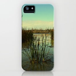 Where Geese Come to Fly iPhone Case