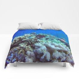 Great Barrier Reef Comforters