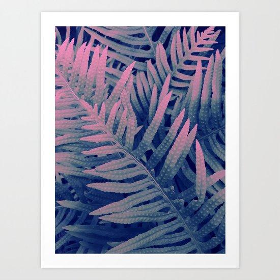 Ferns#3 Art Print