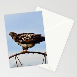Young Bald Eagle perching on the Wheel Stationery Cards