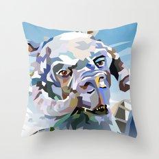 SW#40 Throw Pillow
