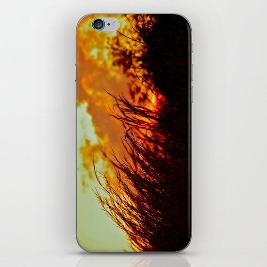 Sunset Brings the Wind iPhone & iPod Skin