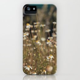 Field of Daisies - Floral Photography #Society6 iPhone Case