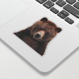Baby Bear Sticker