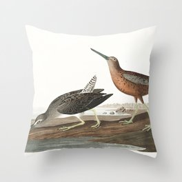 Red breasted snipe, Birds of America, Audubon Plate 335 Throw Pillow