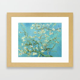 Vincent Van Gogh Almond Blossoms Framed Art Print