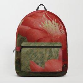 Cactus flower Backpack