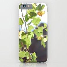 Red Rocks through Leaves iPhone 6s Slim Case