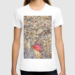 Red Leaf Stuck Among Watery Rocks T-shirt
