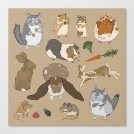 Small pets Canvas Print