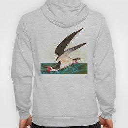 Black Skimmer or Shearwater Bird Hoody