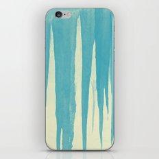 2773 iPhone & iPod Skin