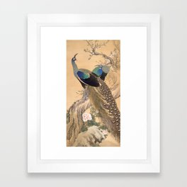 A Pair of Peacocks in Spring - Japanese Painting Framed Art Print