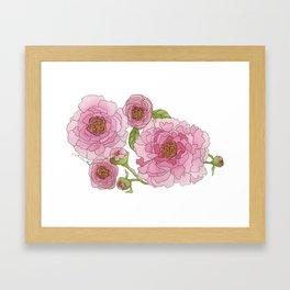 Pink Watercolor Peonies Framed Art Print