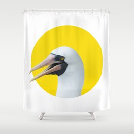 Hi! Nazca booby Shower Curtain