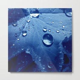 water pearls Metal Print
