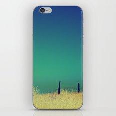 Channel Dream iPhone & iPod Skin