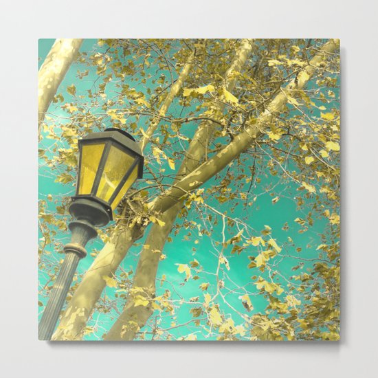 Autumn Gold Leafs in Turquoise Sky  Metal Print