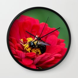 Pollination Wall Clock
