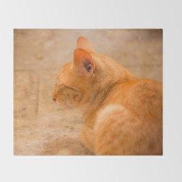 Orange Cat Is Resting On The Terrace  #decor #society6 #homedecor Throw Blanket