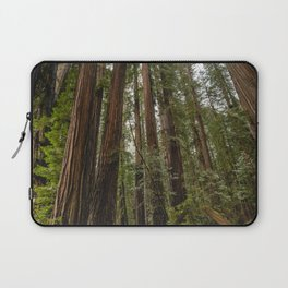 Redwood Forest Adventure VII - Nature Photography Laptop Sleeve
