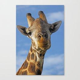 The Giraffe II Canvas Print