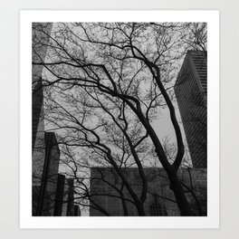 Tree silhouettes in New York City Art Print