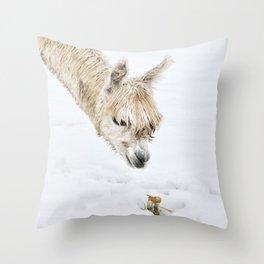 Hello...... Are you cold? Throw Pillow