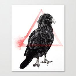 Scavenger II - Forage Canvas Print