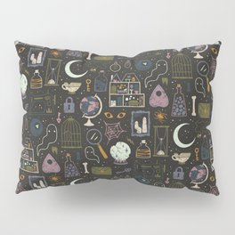 Haunted Attic Pillow Sham