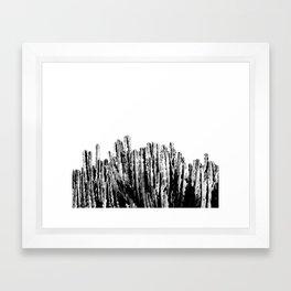 Cactus Garden IV Framed Art Print