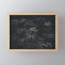 Wildflower Series - Ferns Framed Mini Art Print