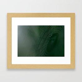 Macro of a spider web Framed Art Print