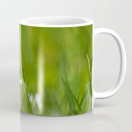 Butterfly VIII Coffee Mug