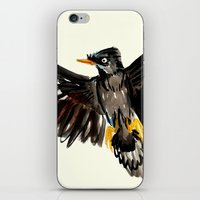 singapore iPhone & iPod Skins featuring Singapore Bird by June Chang Studio