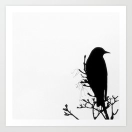 Perched Bird Art Print
