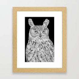 Eurasian Eagle Owl Framed Art Print