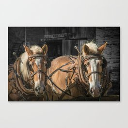 A Team of Work Horses waiting by a Blacksmith Shop at Bowens Mill Canvas Print