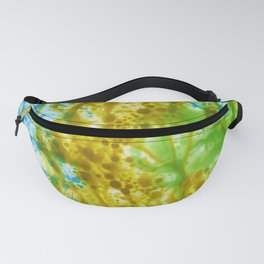 Abstract No. 577 Fanny Pack