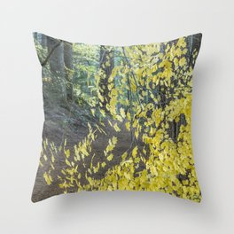 A Splay of Fall Leaves on a Forest Trail Throw Pillow