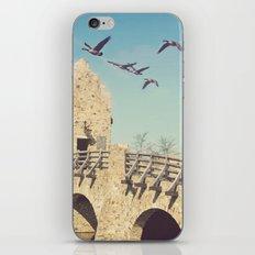A Dreamer's Paradise iPhone & iPod Skin
