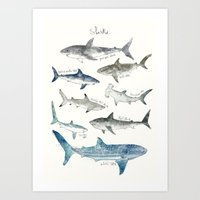 sharks Art Prints featuring Sharks by Amy Hamilton