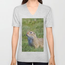 Souslik (Spermophilus citellus) European ground squirrel in the natural environment Unisex V-Neck