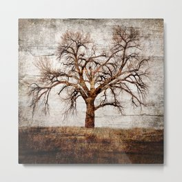 BARE BONES AND BRANCHES Metal Print
